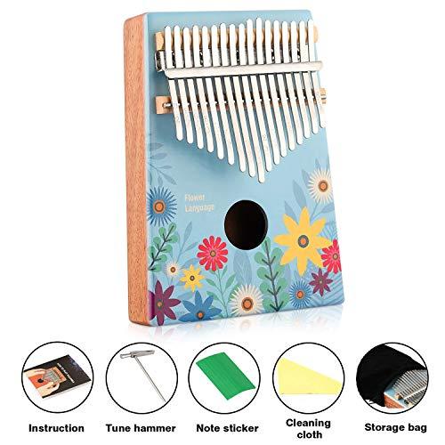 Kalimba 17 Schlüssel, Finger-Klavier Marimbas mit Stimmhammer bestes Musikgeschenk für Kinder und Musikliebhaber Painted
