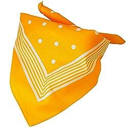 Yellow With White Stripes & Polka Dot Bandana Neckerchief from Ties Planet