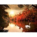 Pyradecor Large Giclee Canvas Prints Wall Art Red Trees Swan Lake Pictures Paintings for Living Room Bedroom Home Decorations Modern Stretched and Framed Autumn Forest Sunset Landscape Artwork