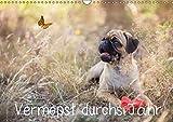 Vermopst durchs Jahr (Wandkalender 2019 DIN A3 quer): Möpse, keiner wie der andere! (Monatskalender, 14 Seiten ) (CALVENDO Tiere)
