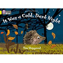 It Was a Cold Dark Night: Band 03/Yellow (Collins Big Cat: Yellow Band 3)