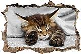 Pixxprint 3D_WD_4836_92x62 schlafende Katze mit großen Ohren Wanddurchbruch 3D Wandtattoo, Vinyl, schwarz / weiß, 92 x 62 x 0,02 cm