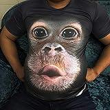 R-Cors Herren T-Shirts 3D Muster Kurzen Ärmels Kurzarm Shirt Sport Fitness T-Shirt Rundhalsausschnitt Lässige Graphics Tees