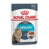 Royal Canin Feline Urinary Care in Sosse | 12 x 85g Katzenfutter
