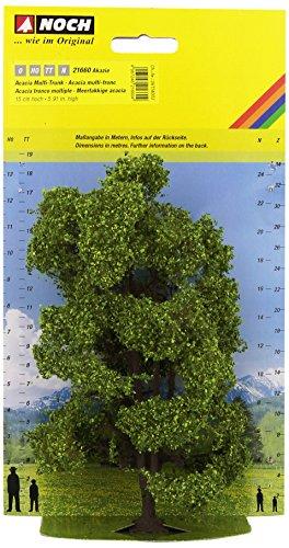 Noch 21660  - Mehrstä mmige acacia 15 cm