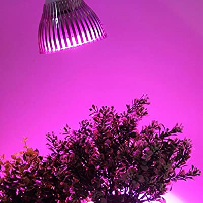 OxyLED E27 LED Grow Light, 24W 12 LEDs Hydroponic Plant Grow Lights Bulb for Garden Greenhouses, Perfect Grow Lights for Indoor Plants (3 Blue & 9 Red)