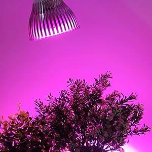 OxyLED® GL02 E27 24W Grow Light Lampada Faretto LED per Piante Peperoncino da Serre - Grow Light Perfetto per Crescita Coltivazione Piante da Interno, 12 LED (3 Blu & 9 Rosso)