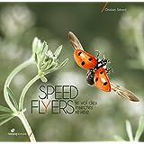Speed flyers : Le vol des insectes révélé