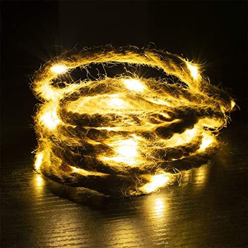 VBWER Lampada da produzione naturale fai-da-te Lunghezza corda 2M Lampada LED 20 Lampada bianca calda
