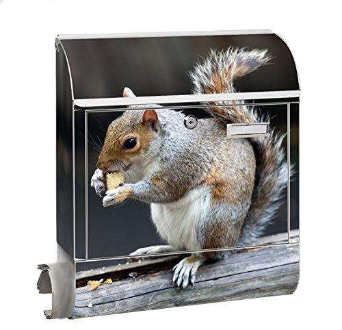 Design Motiv Briefkasten Maxi mit Zeitungsfach Zeitungsrolle für A4 Post slk shop Groß Eichhörnchen