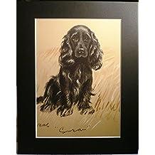 SPANIEL DOG Rare Lucy Dawson 1937 dog print bookplate Unique Gift Christmas