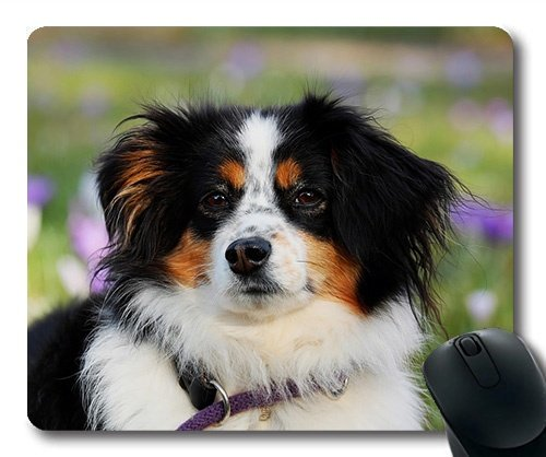 ustom Mouse Pad Lustiger Hund, Ein australischer schäferhund Tiere Eine Herde, Hunde Gaming Mouse Pad ()