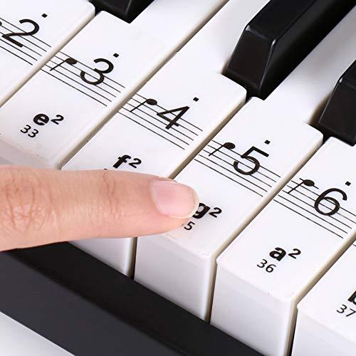 Teclado transparente piano Etiqueta 54/61/88 Teclado