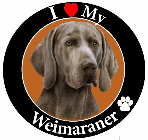 E&S Pets Auto-Magnet, Weimaraner -