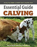 ESSENTIAL GUIDE TO CALVING: Giving Your Beef and Dairy Herd a Healthy Start