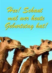 Déplace x-treme et robe très humoristique avec inscription en allemand et de son chanteur chameaux et autres camélidés 14,8 x 21 cm-contenu de la livraison: 3 pièces