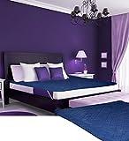 Desirica 100% Waterproof Double Bed Blue...