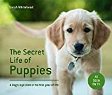 The Secret Life of Puppies
