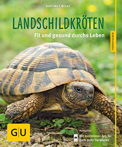 Landschildkröten: Fit und gesund durchs Leben (GU Tierratgeber) -