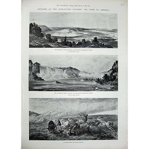 Fuego De Herradura 1894 de la Pradera del Río de Niagara Falls América [Cocina y Hogar]
