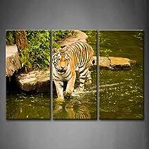 3Paneles de pared Arte Tigre caminar en el agua pintura la imagen impresión sobre lienzo imágenes de animales para decoración del hogar decoración regalo pieza estirada de marco de madera listo para colgar