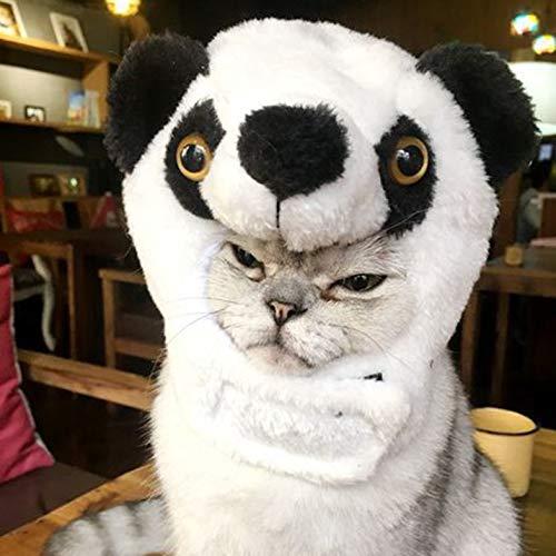 X Factor Halloween Kostüm - Cloverclover Halloween-Rollenspiel-Haustier-Hundekostüm-Tierperücken mit den