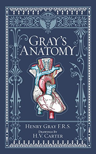 Gray\'s Anatomy (Barnes & Noble Collectible Classics: Omnibus (Barnes & Noble Leatherbound Classic Collection)