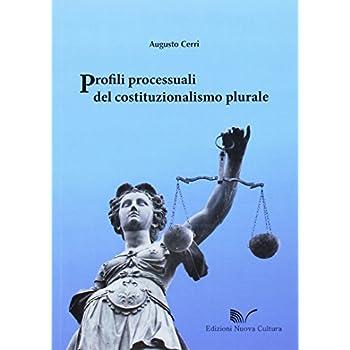 Profili Processuali Del Costituzionalismo Plurale