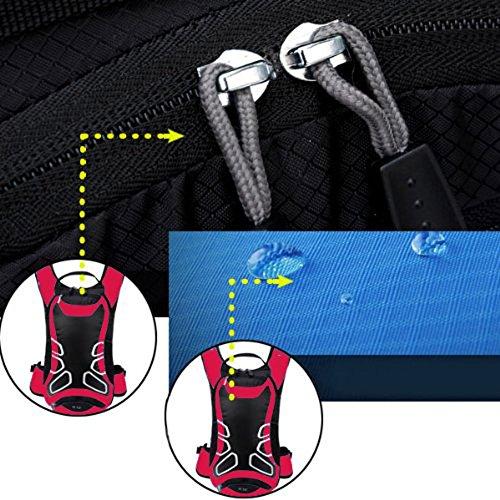 Diamond Candy Sport Taschen , Schlüssel Geldtaschen Karten Geldtasche, Joggen, Kletterei, Wandern, Trekking, Radfahren, Marathon Sport Aktivitäten Rot