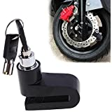 Bigzoom Anti Theft Disc Brack Security Lock for All Bikes and Scooter (Multicolour)