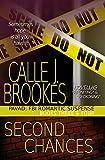 Second Chances: A PAVAD: FBI Duet (PAVAD: FBI Romantic Suspense)