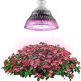 XJLED E27 36W LED Anlage wachsen Lichter Lampe Pflanzenleuchte LED-Pflanzenlampe Pflanzen Tomato Cactus - 4 blau 14 rot