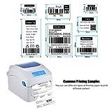 Aibecy Gprinter Stampante termica 1D 2D QR Etichetta con codice a barre Stampa da 8 pollici Velocità veloce Larghezza con etichetta esterna Ingresso per Express Magazzino pacchi postali 20-118 mm