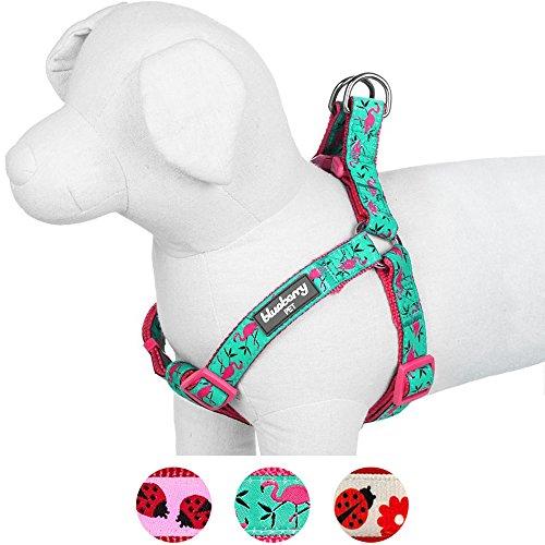 hundeinfo24.de Blueberry Pet Step-In Geschirre für Hunde Pink Flamingo auf Hell-Smaragtgrün Hundegeschirr mit Zugentlastung Verstellbar, Nylon 1,5 cm S, Passender Hundehalsband & Hundeleinen erhältlich separate