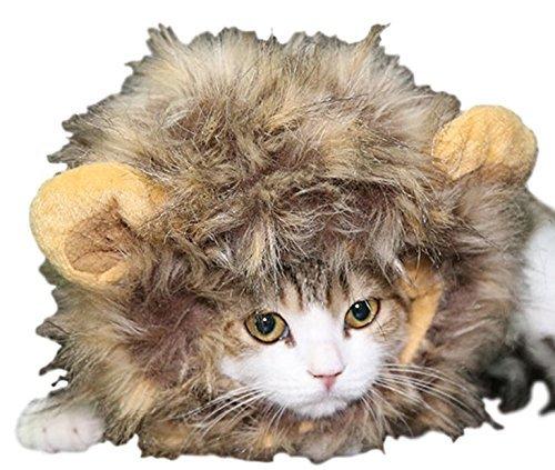 Haustier Katze oder kleiner Hund Panda Löwe Maus Mähne Kapuze Ohren lustig Halloween Kostüm Kleid Outfit - braun (Kostüm Kostüm Braun Maus)
