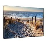 Kunstdruck - Schöner Weg zum Strand III - Bild auf Leinwand - 70x50 cm einteilig - Leinwandbilder - Urlaub, Sonne & Meer - Nordsee - Dünen mit Strandgräsern - Idylle - Erholung