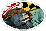Citizen Maryland Terrapin Oval Magnet, 15,2 x 10,2 cm – Euro Car Kühlschrank Locker Vinyl Magnet