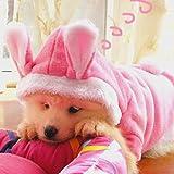 Bunny Puppy Hund Katze Kostüm Haustier Kleidung Hoodie Coat Kaninchen Verkleidungen Kleidung für Hund Chihuahua Yorkshire Pudel