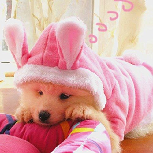 Conejo de peluche de conejo disfraz de gato de perro mascota ropa sudadera con capucha abrigo vestido ropa para perro Chihuahua Yorkshire caniche