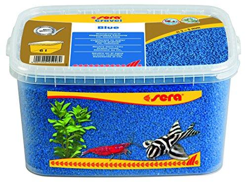 sera Gravel Blue (Ø 2 - 3 mm) - Blauer Aquarienkies bzw. Farbkies für alle Aquarien - frei von Schadstoffen - geeignet als Garnelenkies