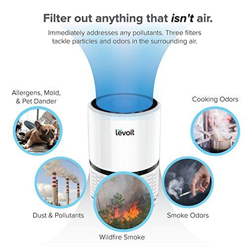 Levoit-Purificador-de-Aire-con-Verdadero-Filtro-HEPA-Compacto-Tres-Ajustes-de-Velocidad-con-la-Luz-de-la-Noche-Filtro-de-Aire-con-Ruido-Bajo-para-Hogar-Oficinas-Mascotas-Fumadores-Cocina-LV-H132
