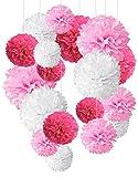 Recosis 1 Born 18 Stück Seidenpapier Pompoms Blumen Ball Dekorpapier Kit für Geburtstag Hochzeit Baby Dusche Hauptdekorationen und Partei Dekoration-Rosa, Pink und Weiß