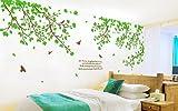 Colorfulworld@ XXXL! Riesige grüne Paar Baum Wandtattoo Sticker 6 Wege zu gelten 170cm (H) Wandtattoo Wandaufkleber Wandsticker Kinderzimmer