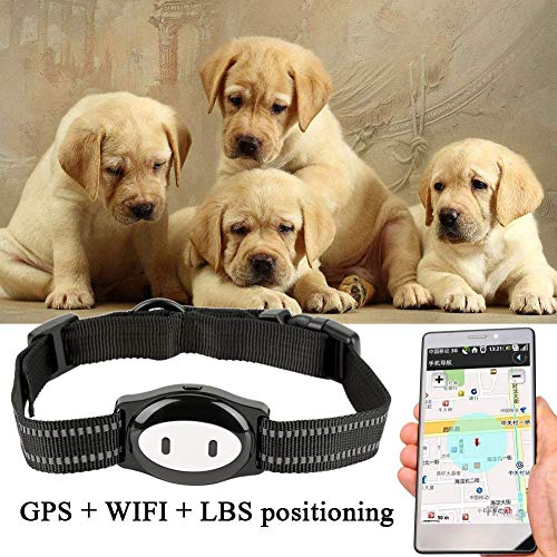 XDYFF Mini WiFi GPS Tracker für Haustiere Hund/Cat mit Halsband Anti Verlorene GPS Ortung Echtzeit GPS Tracking Locator Hundehalsband Training