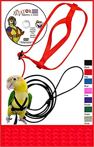 The AVIATOR Pet Bird Harness and Leash: Petite Red Made in America