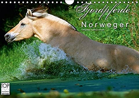 Fjordpferde - Norweger (Wandkalender 2017 DIN A4 quer): Kalender Fjordpferde