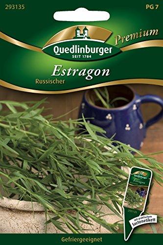 Estragon mehrjährig, 1 Tüte Samen