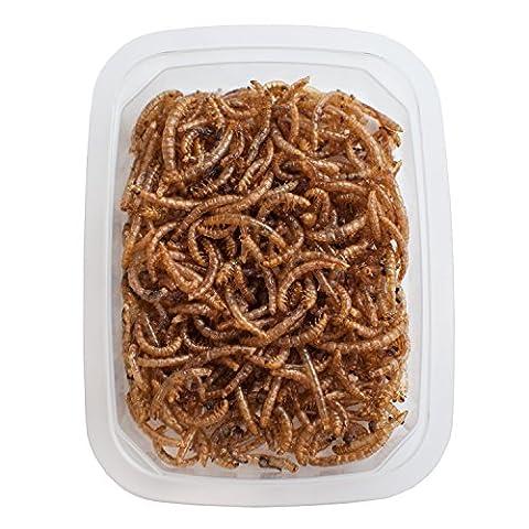 verzehrfertige Mehlwürmer, 10g