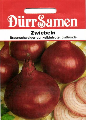 Zwiebeln Braunschweiger dunkelblutrote, plattrunde