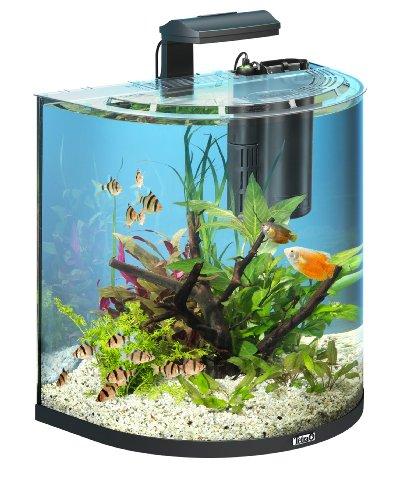 Tetra AquaArt Explorer Line Aquarium Komplett-Set 60 Liter anthrazit (gewölbte Frontscheibe, langlebige LED-Beleuchtung, ideal für die Haltung von tropischen Zierfischen)